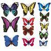 Наклейки-бабочки на стену разноцветные